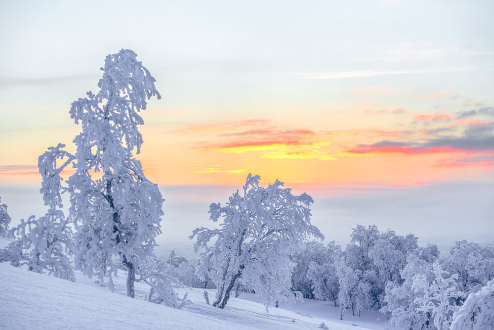 sunset_polar_pastel_twilight.jpg
