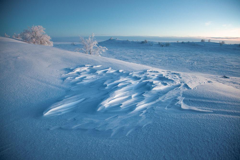 frozen_arctic_land.jpg