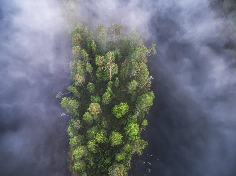 lapland_summer_fog-3.jpg