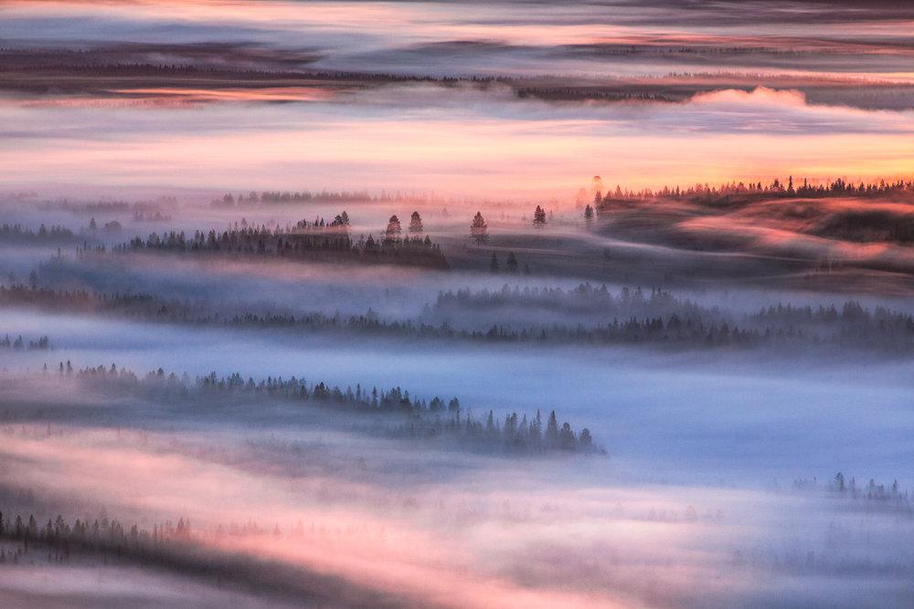 lapland_summer_fog-16.jpg