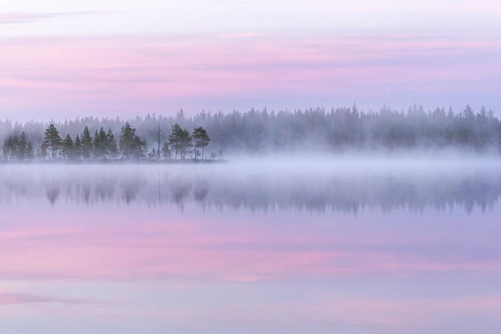 lapland_summer_fog.jpg