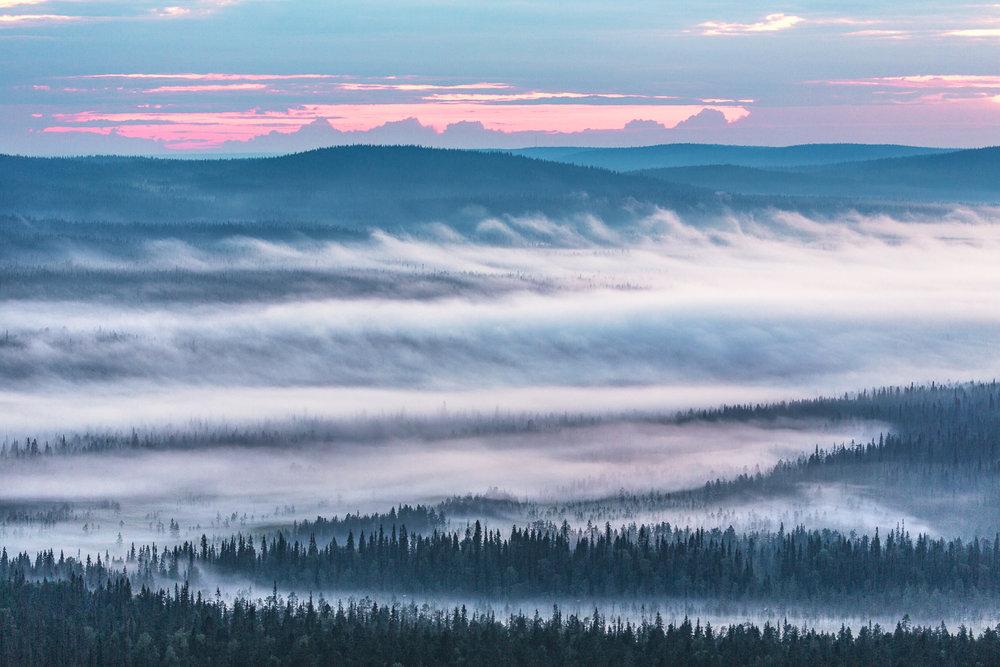 fog_uus-13.jpg