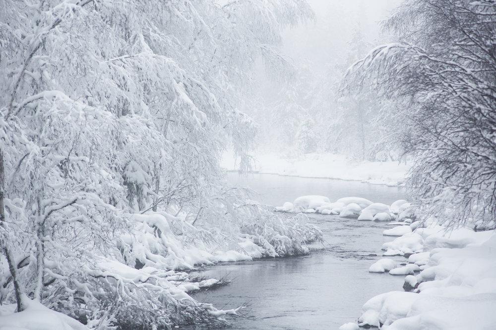 wanderer_arctic_winter.jpg
