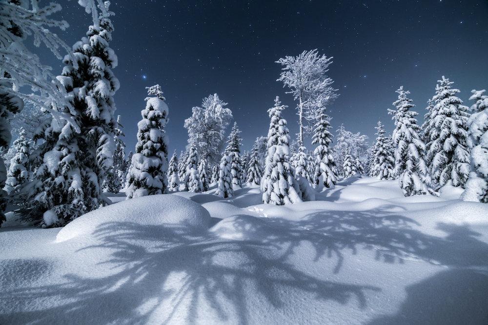 winter_lapland6.jpg