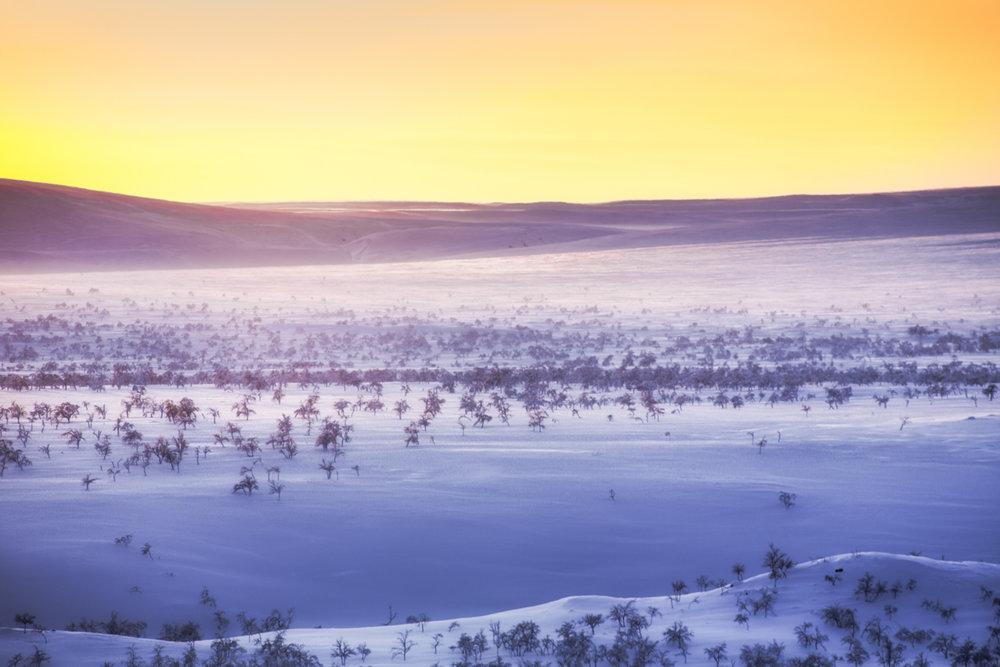 arctic_desert_sunset.jpg