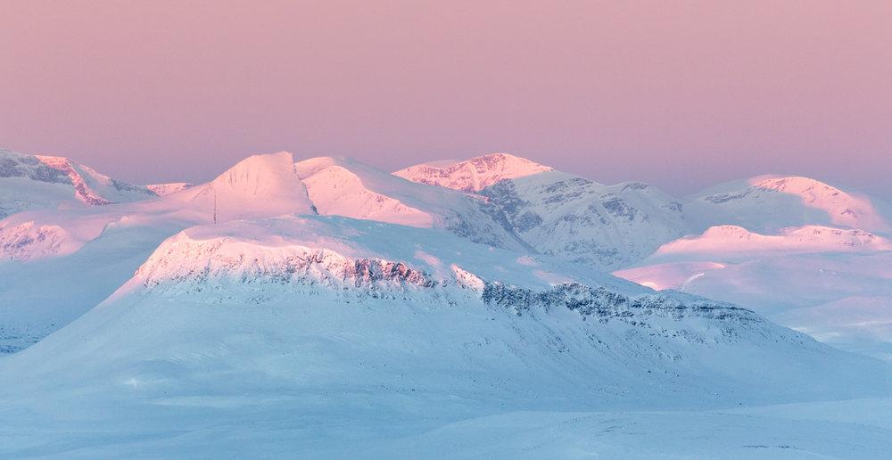 reindeers_lapland-13.jpg