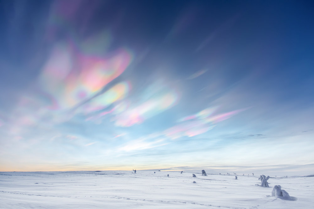 Pearl clouds.