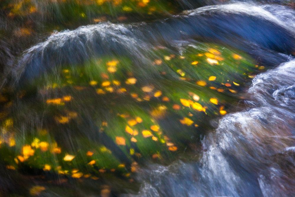 autumn_muonio-2.jpg