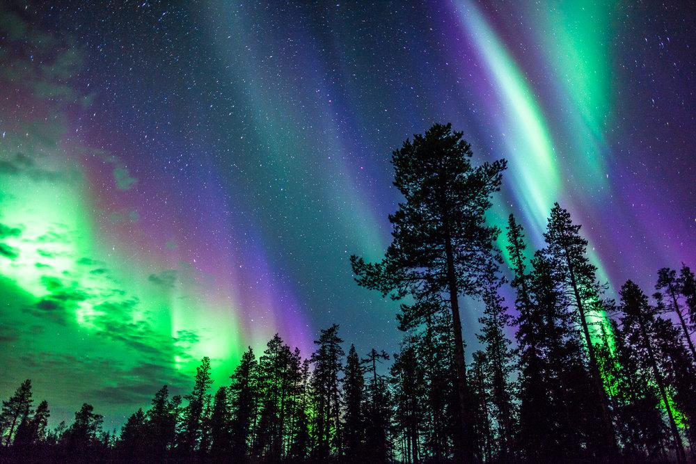 northern_light_autumn.jpg