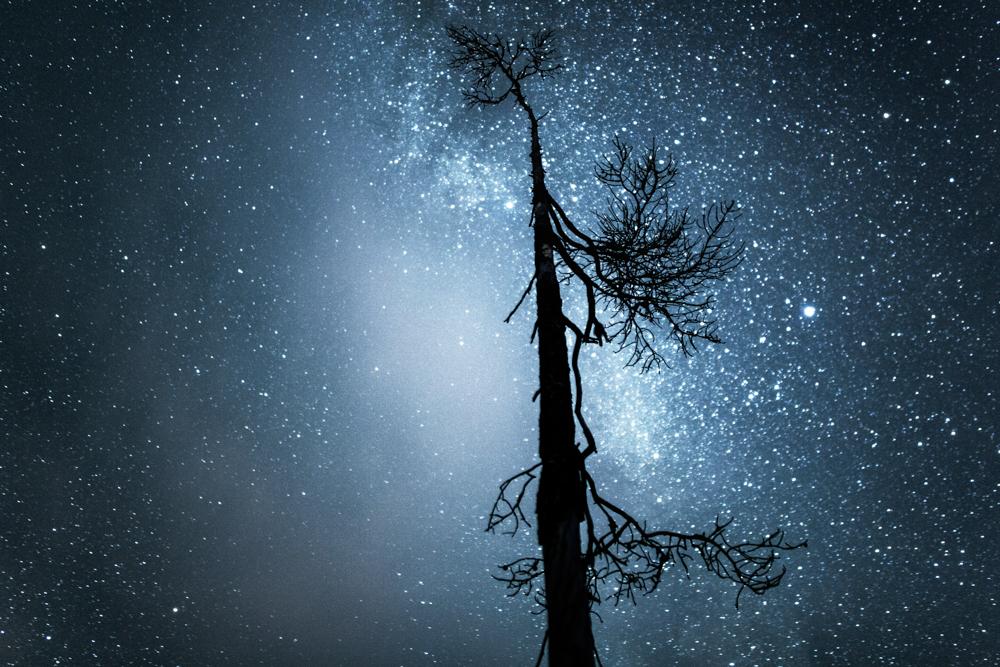 autumn_night_lapland-11.jpg