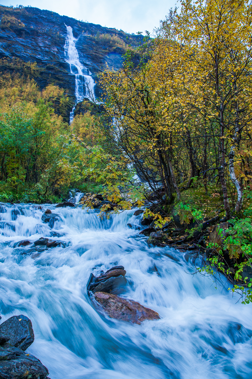 waterfall_forest_fjord.jpg