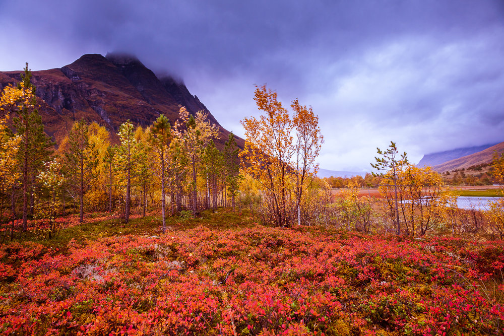 autumn_muonio-10.jpg