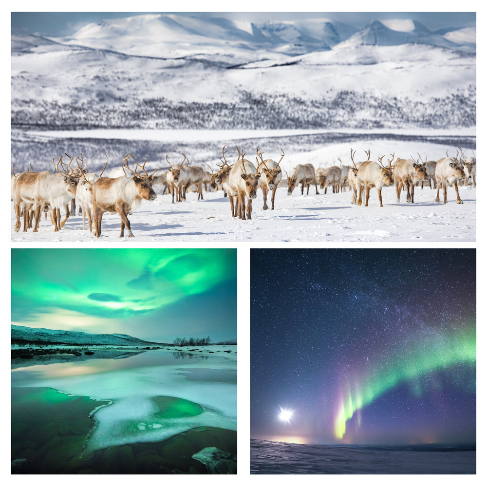lapland_photography_workshops-3.jpg