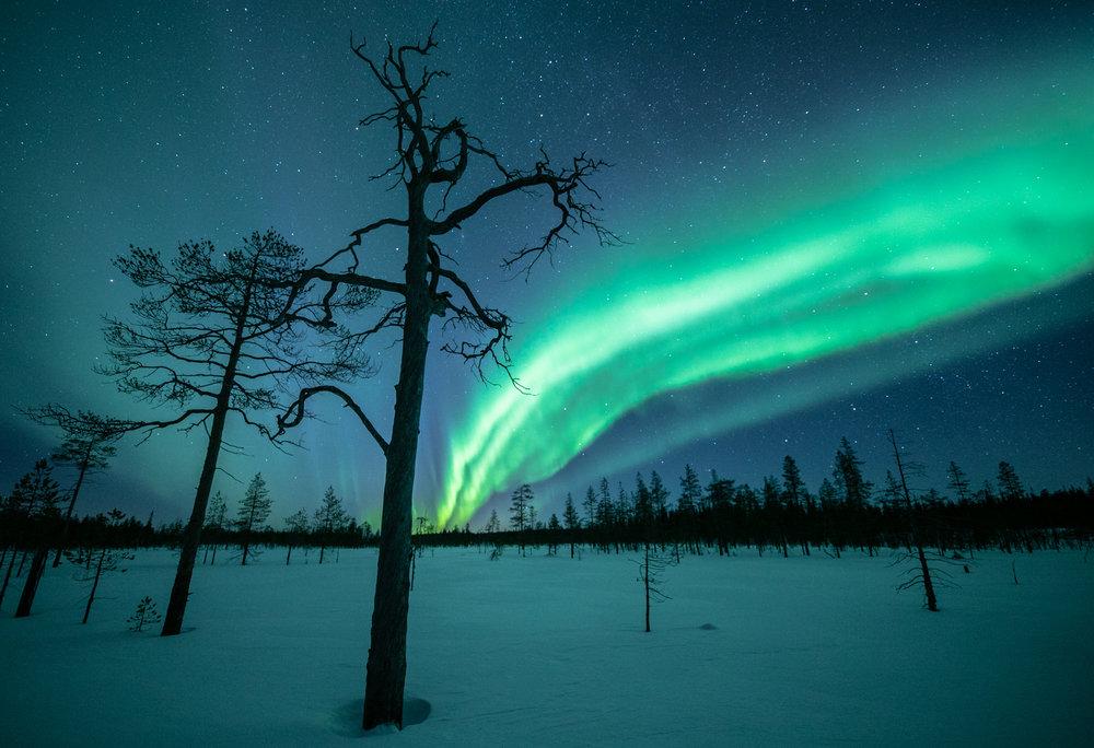 northern_lights_photography.jpg