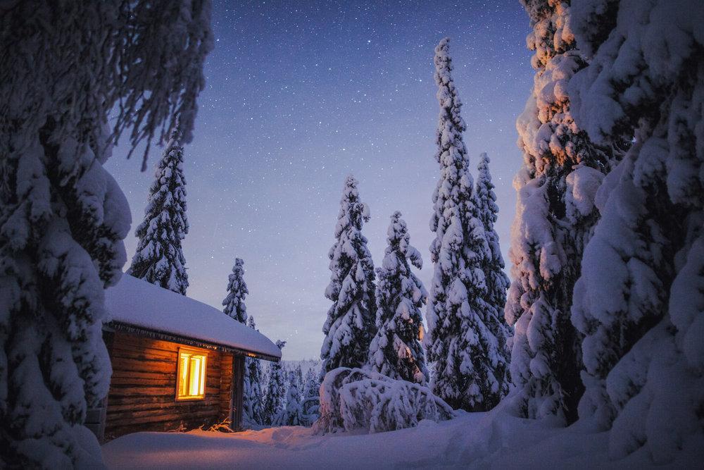 cozy_lapland_forest_winter.jpg