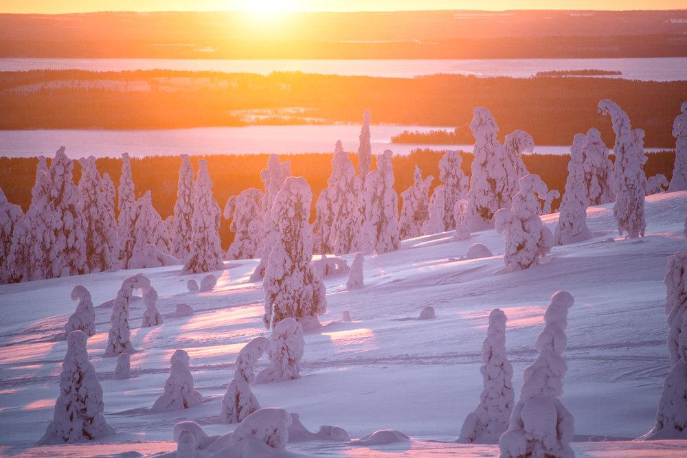 winter_day_lapland.jpg