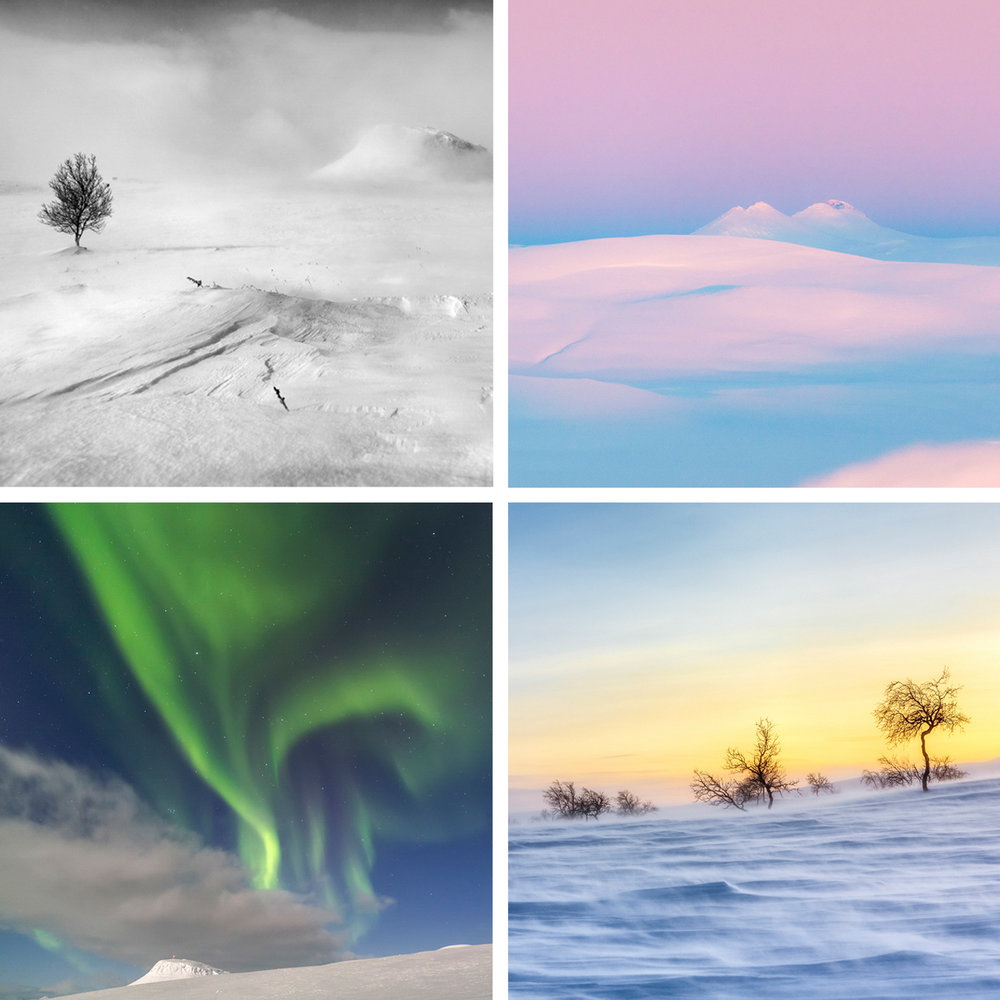 POLAR NIGHT PHOTO WORKSHOP - PASTEL HUES OF THE ARCTIC - Feb 3rd - 10th 2020Photography workshops in the Arctic gives you a highlight of the snow-covered world. An experience that takes your breath away!