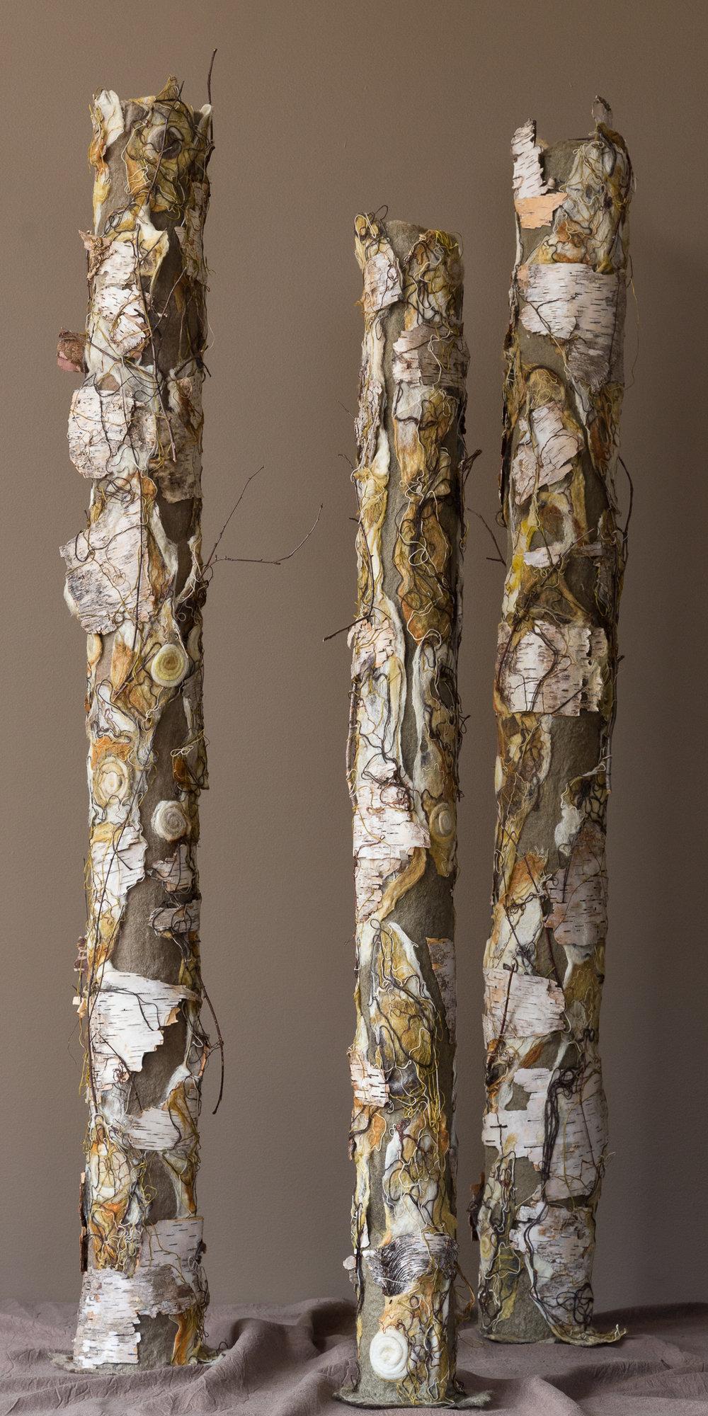 Birch Trio (autumn).jpg