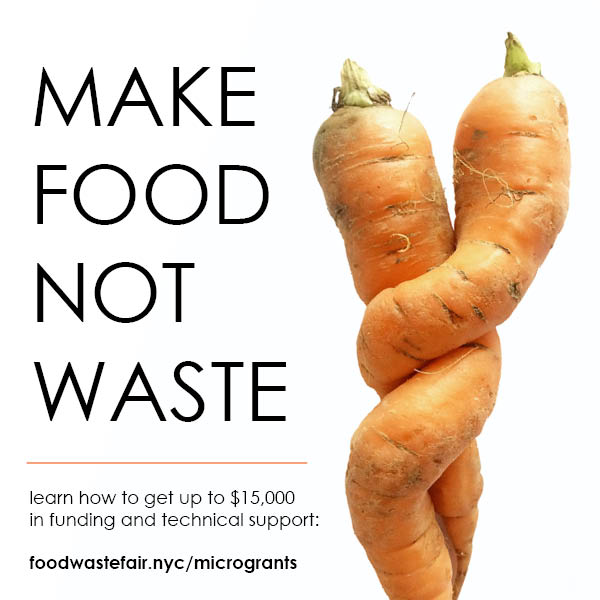 Microgrant Program Application Information - If you have any questions, please email microgrants@foodwastefair.nyc.