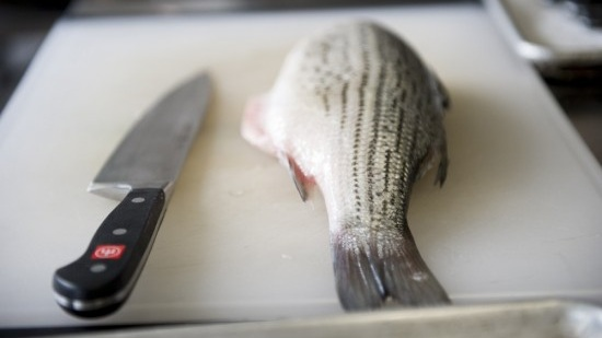 From Fin to Tail: Cooking the Entire Fish - May 20, 2019   8:00 AM - 12:00 PMChef Bill Telepan, local and sustainable seafood sourcing champion, will lead the class in a hands-on workshop on butchering and breaking down a whole fish—and highlight creative uses of trim from fish in a professional kitchen.Participants will explore using every part of the fish to prepare ceviche and fish tacos. Meanwhile, Chef Bill will also prepare an Ecuadoran fish soup, inspiring participants to uncover new sources of inspiration for more holistic ingredient use. The workshop will conclude with a group meal and conversation on strategies to prevent food waste.Facilitated by Chef Bill TelepanDirector of Sustainability, Institute of Culinary Education and Executive Chef, OceanaBill is one of New York's leaders in sourcing quality ingredients from small farms and local purveyors. Before he joined Oceana as Executive Chef in 2016, Bill was owner and chef of the Michelin-starred Telepan Restaurant, and worked at Le Cirque, Le Bernardin, Ansonia, and Judson Grill. Bill is also the Director of Sustainability at the Institute of Culinary Education. He teaches ICE students about waste and the environment through demos, zero waste meals, green market tours, lessons in hydroponic farming, guest lectures and more.For New York-based professional chefs