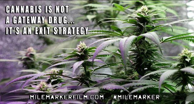 June is PTSD Awareness month. Mile Marker is a film to help educate people on veterans issues and alternative treatments for PTSD. Learn more about the alternatives to opiod prescription drugs, and the benefits of plants over pills.  You can find Mile Marker right now on iTunes, and soon to be released on other VOD outlets.  #milemarker #milemarkerfilm #veteransforcannabis #veterans #plantsoverpills #cannabiscures #cannabis #ptsd #22toomany #legal4ptsd #potoverpills #twentytwomany #m4mmvets #ptsdawarenessmonth #ptsdawareness