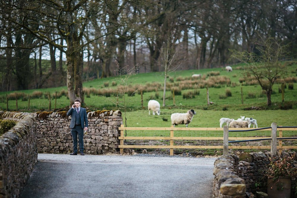 Sheep at a wedding in Lancashire