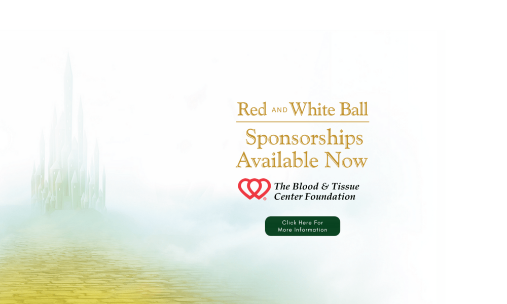 RWB-2018-sponsorship-banner-min.png