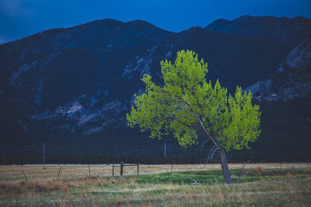 Colorado-Trip-104.jpg