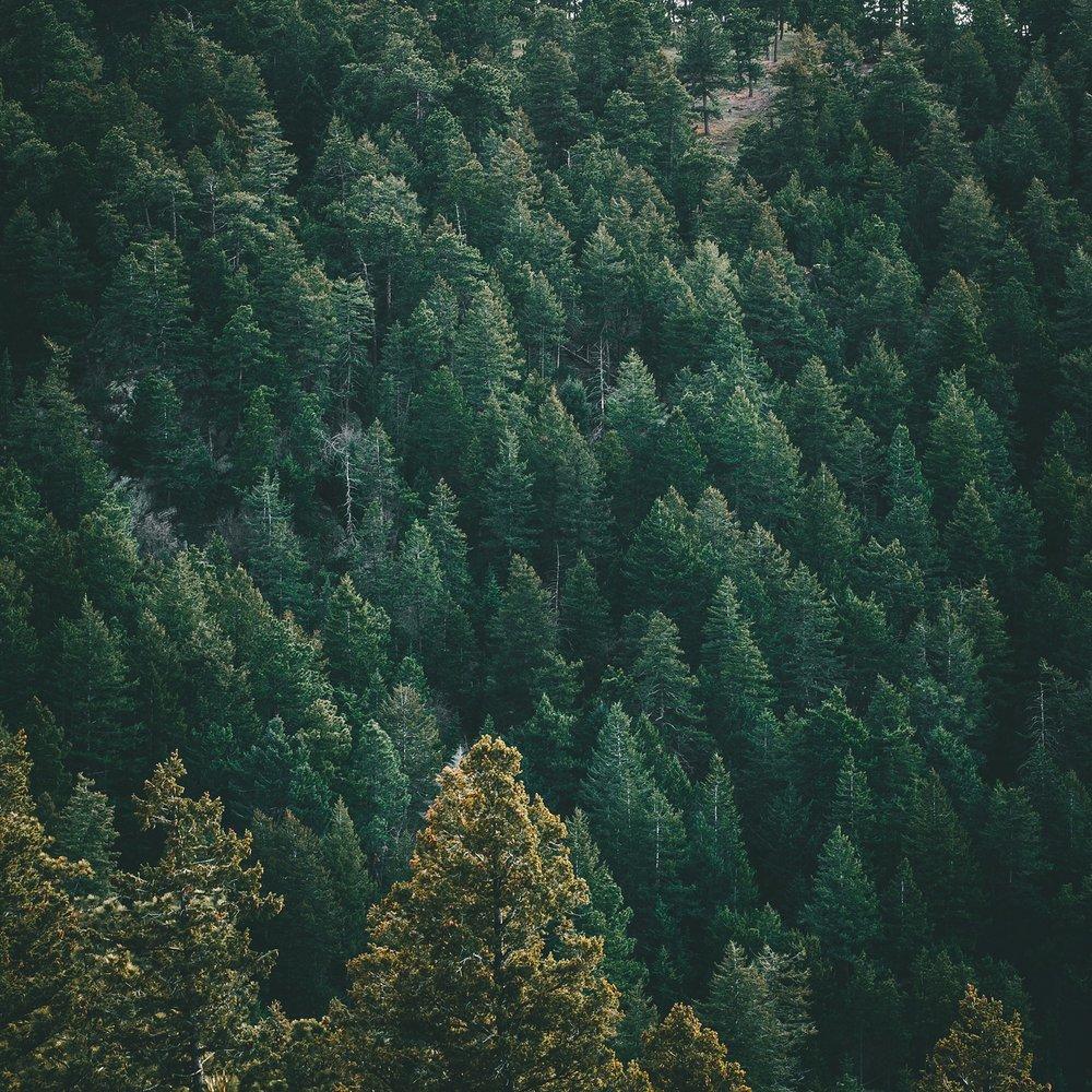 Colorado-Trip-103.jpg