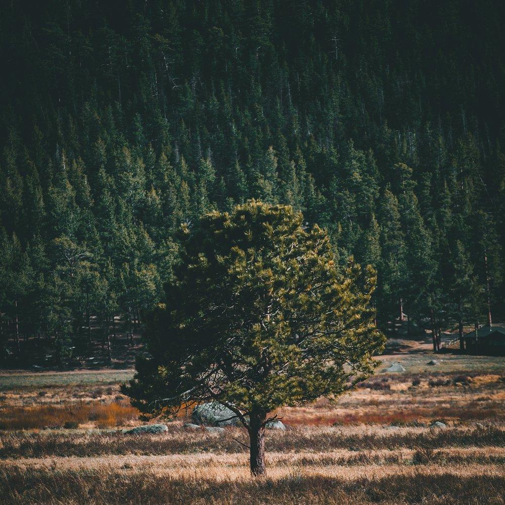 Colorado-Trip-146.jpg