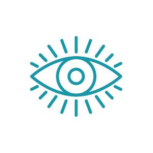 icon_vision.jpg