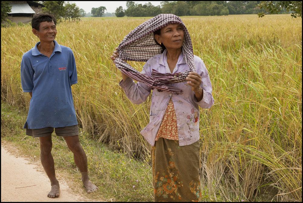 Cambodian rice farmer 2.jpg