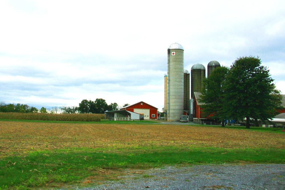 Mervin's farm in Lancaster, PA.