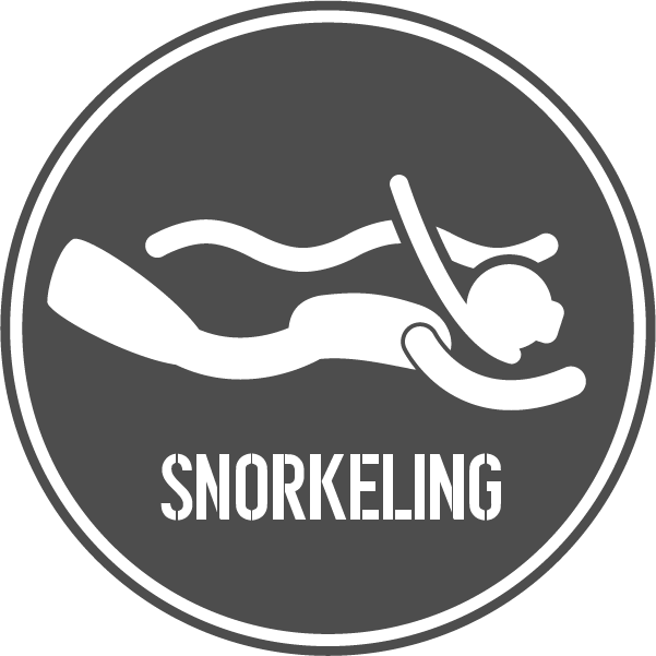SNORKELINGRecurso 42.png