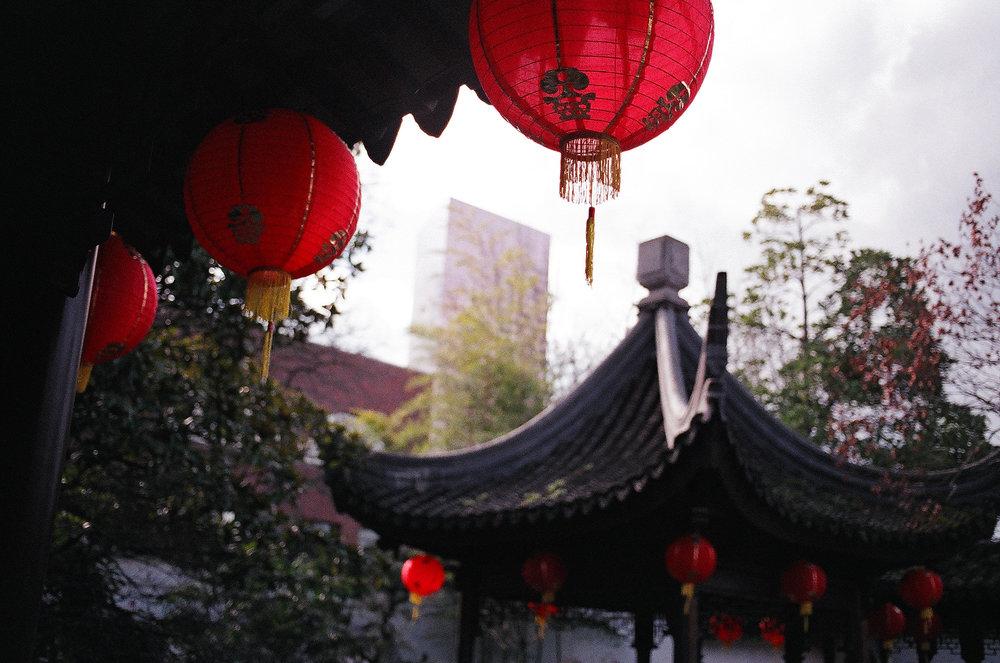 Lan Su Chinese garden - Fuji Natura 1600