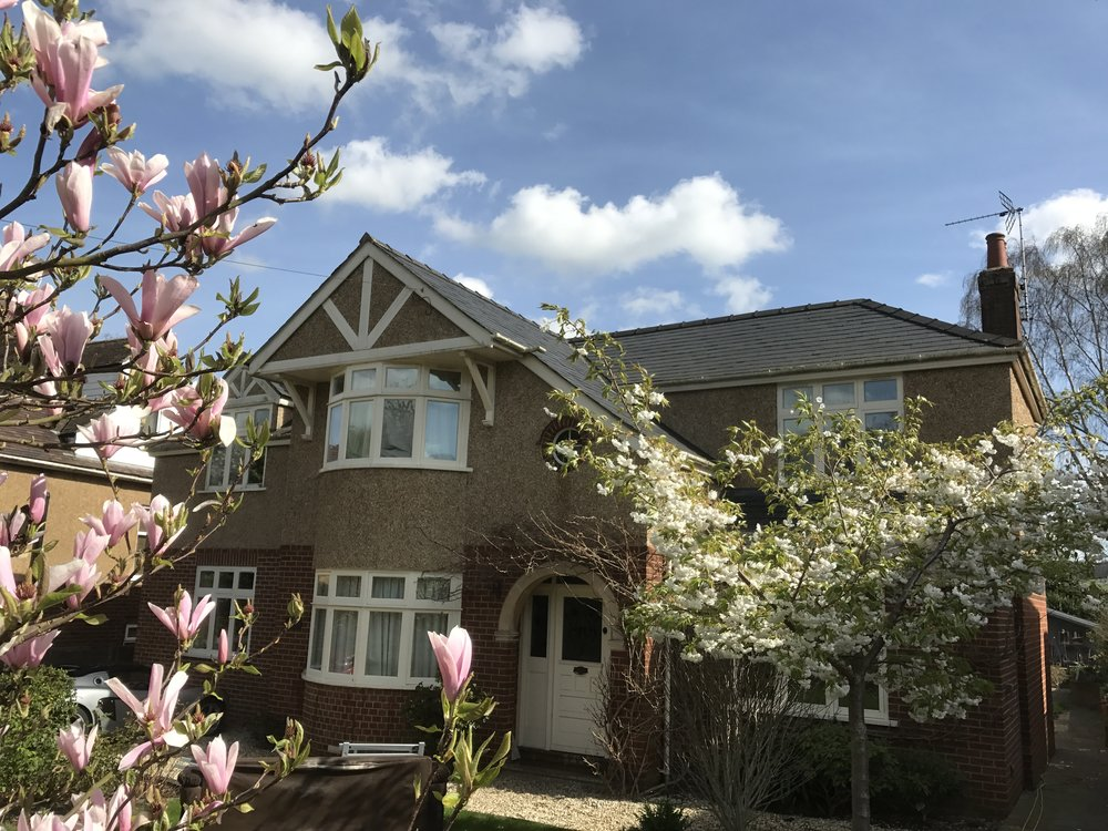 Another property with the trees in spectacular blossom!