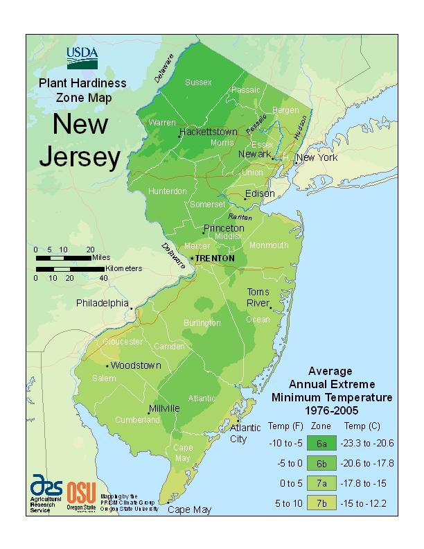 NJ Hardiness Map