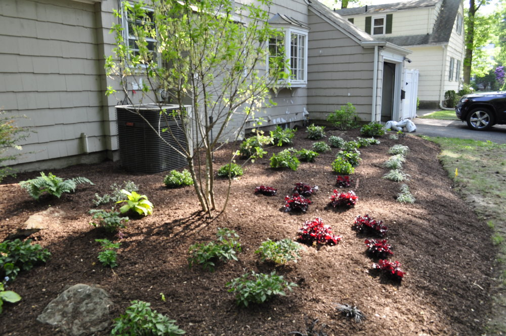 Front Yard Landscape Design, Tenafly