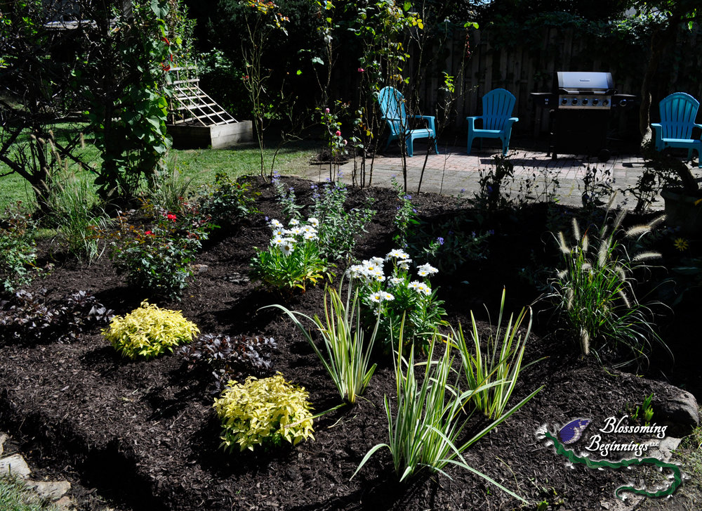 Cottage Garden Landscape Design