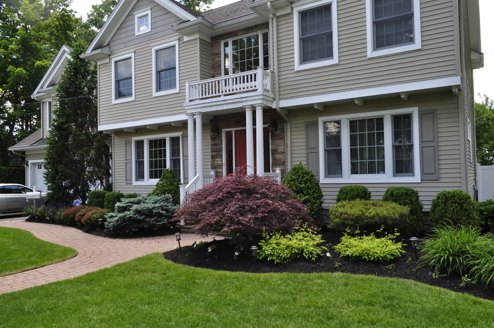 New Milford Client, Blossoming Beginnings