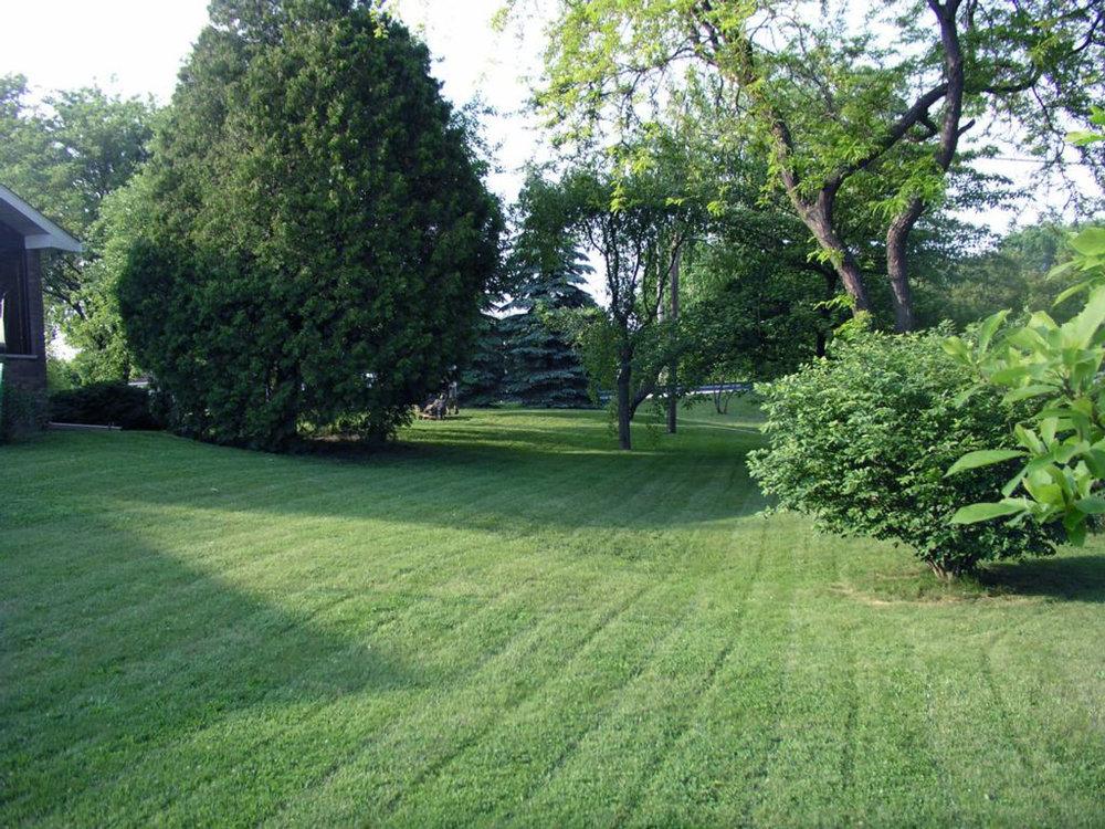 Landscape Maintenance, Leonia