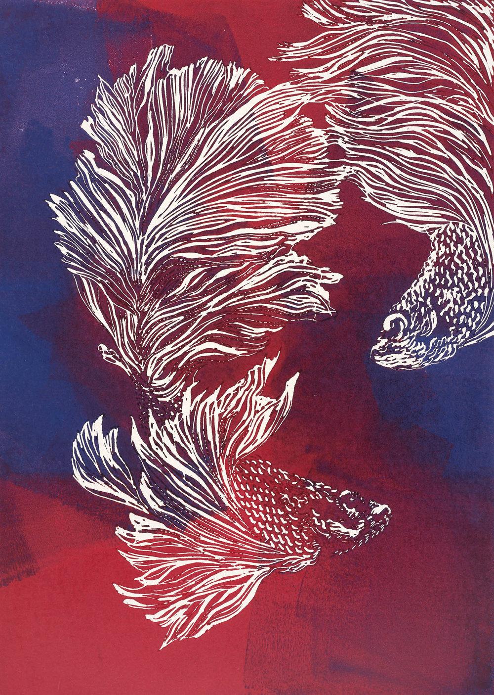 SiameseFightingFish,bl,r_12x16_2017.jpg