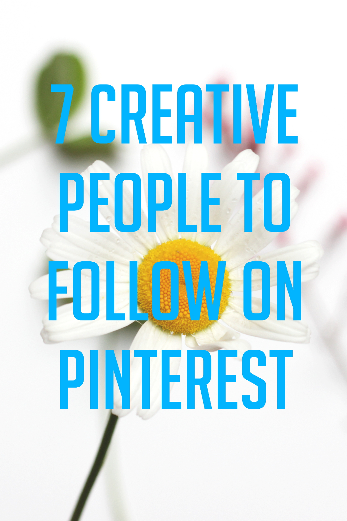 7 Creative People to Follow on Pinterest
