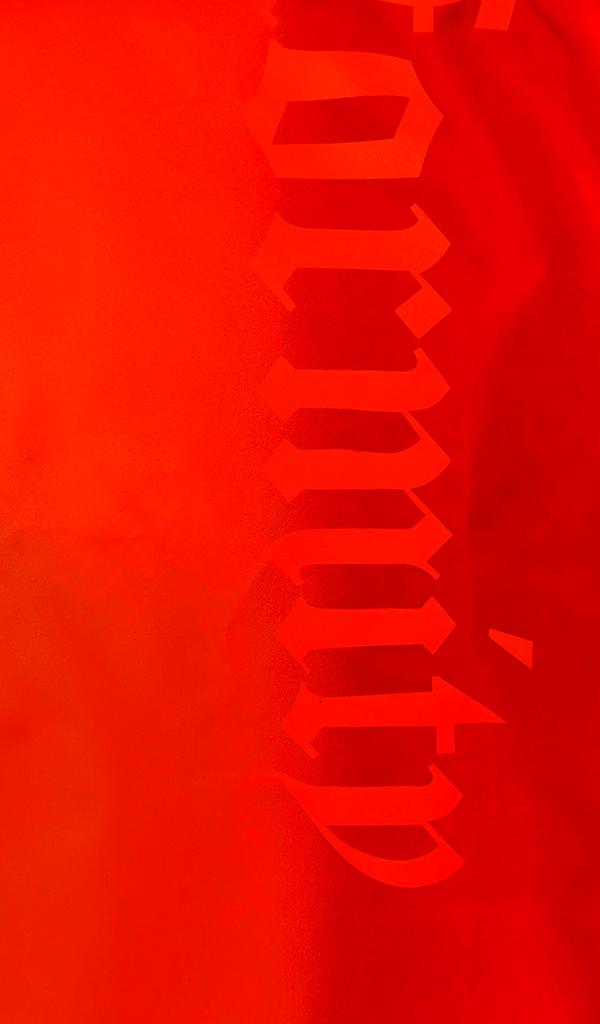 Antibodies_2_B.jpg