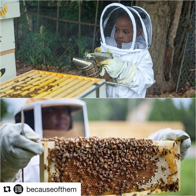 "Look at these little beekeepers!! What a great way to revitalize a community while also engaging children in biology and nature! #stempower #stem  #Repost @becauseofthem with @get_repost ・・・ As a way to help fight against blight in Detroit, these Black beekeepers are transforming vacant lots into bee farms. Their motto? ""Work Hard, Stay Bumble."" When Detroit natives Timothy Paule and Nicole Lindsey noticed the numbers of dilapidated and vacant lots in their beloved city rising, they decided to implore a creative new solution to revitalize some of these spaces. Paule and Lindsey co-founded a nonprofit organization called ""Detroit Hives"" and began to purchase vacant properties and repurpose them into fully functioning bee farms. ""I went to the local market that I normally go to, and he suggested that I try some local honey for my cough,"" Paule said as he reflected upon a recent cold that he just couldn't get rid of as the inspiration behind their efforts to begin to cultivate honey. ""He said you consume local honey because it has medicinal properties."" When he began to feel better, him and his girlfriend Lindsey began to also consider the number of allergies and other health-related reactions that were probably a direct result of the environmental hazards in the growing number of unkept properties in Detroit. They meshed their ideas of helping to reclaim fertile spaces in their city with the seemingly medicinal properties of locally sourced honey and @DetroitHives was created.  Click the link in our profile to read full story.  #blackexcellence #alltimehigh"
