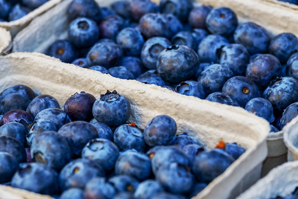 blueberries-3474854_1920.jpg