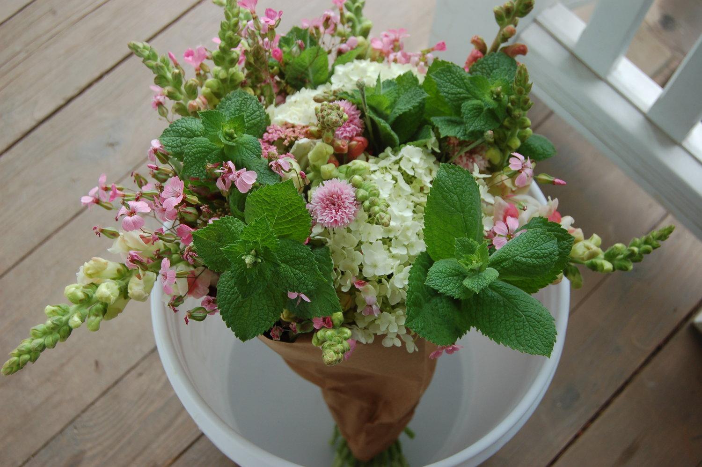 Flower Shop White Cottage Creative