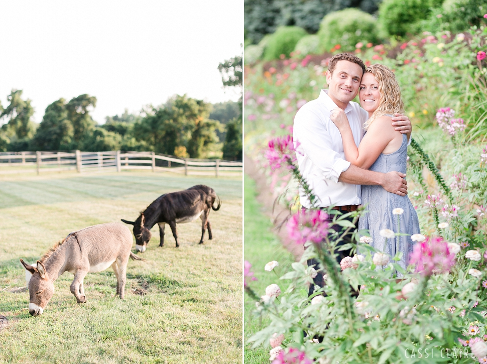 NJ-Farm-Engagement-Photos_08.jpg