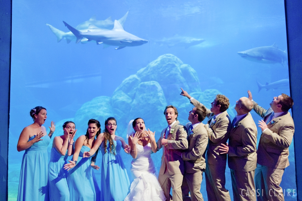 Adventure-Aquarium-Wedding-Photos_CassiClaire_18.jpg