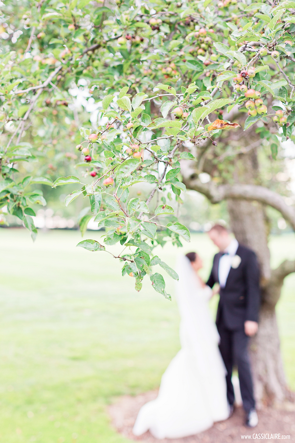 Cassi-Claire_Best-of-2014-Weddings_005_____2editgreens.jpg